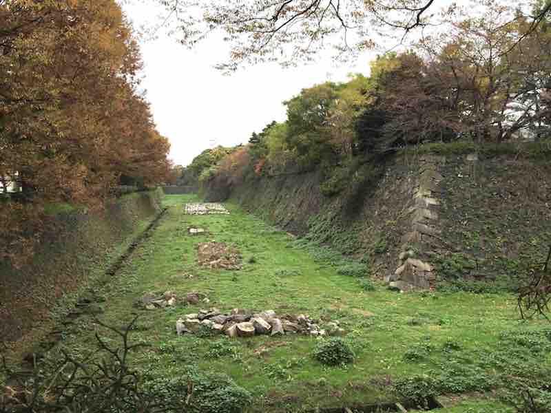 名古屋城 外堀の緑