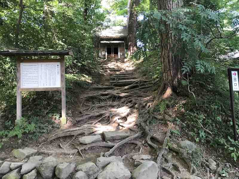 岩手 平泉 関山天満宮と木の根っこ