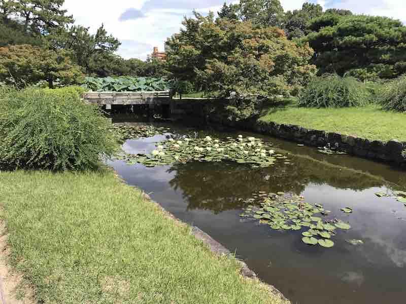香川県 栗林公園 緑 夏