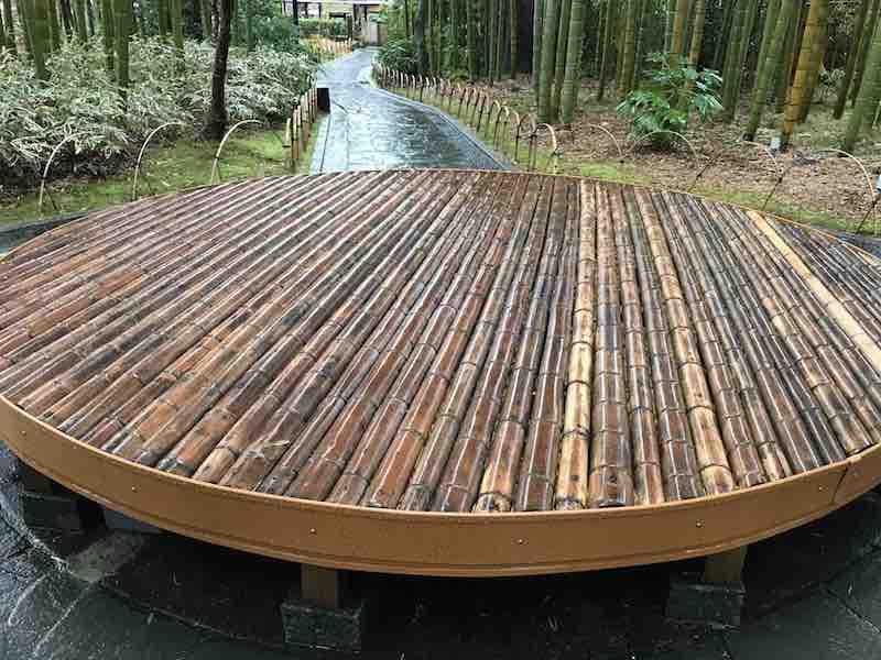 静岡県 修善寺 竹林の小径