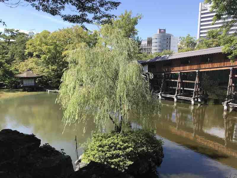和歌山城のまわりの景観 池