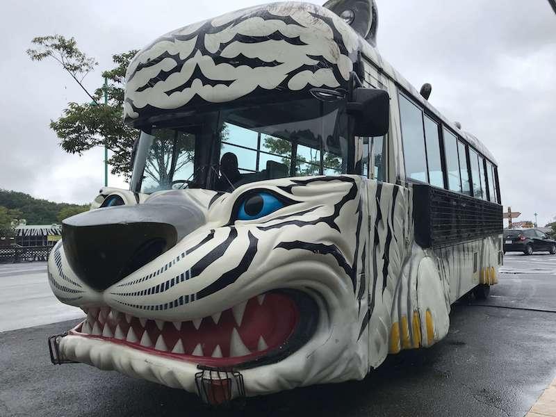 群馬サファリパークのホワイトタイガーのバス