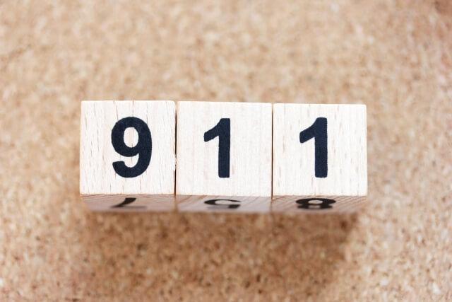 911のディスプレイ