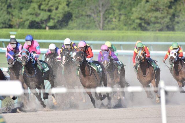 競馬場 走る馬の集団