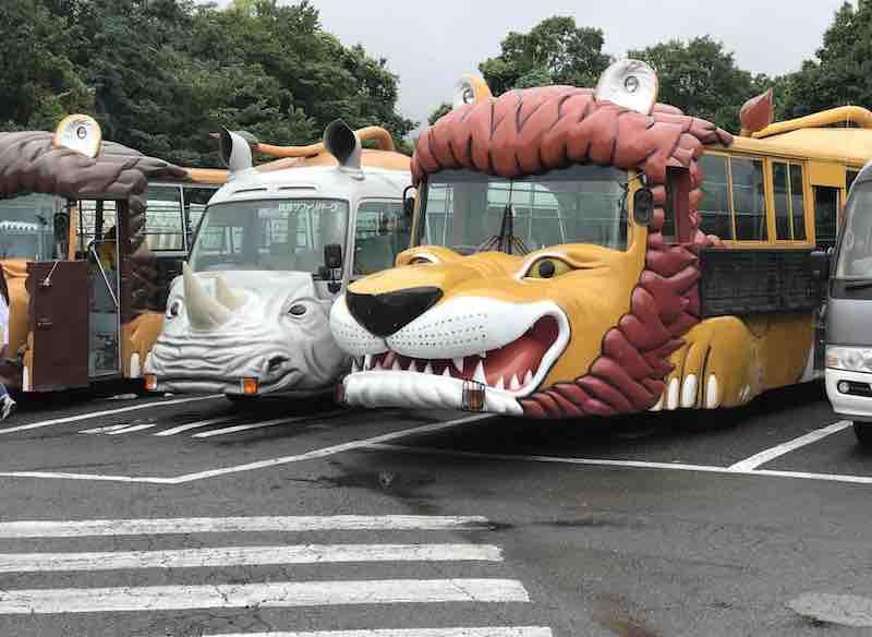 群馬サファリパークのツアーバス
