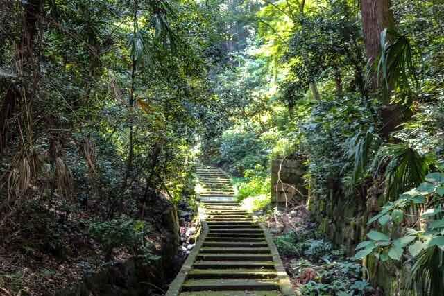 山の中の石の階段