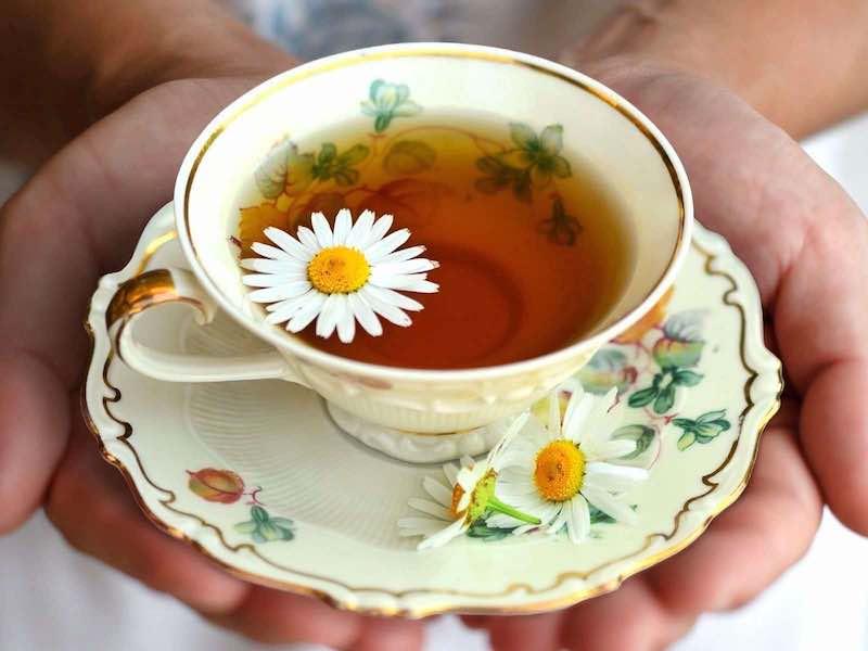 手に持った紅茶と花びら