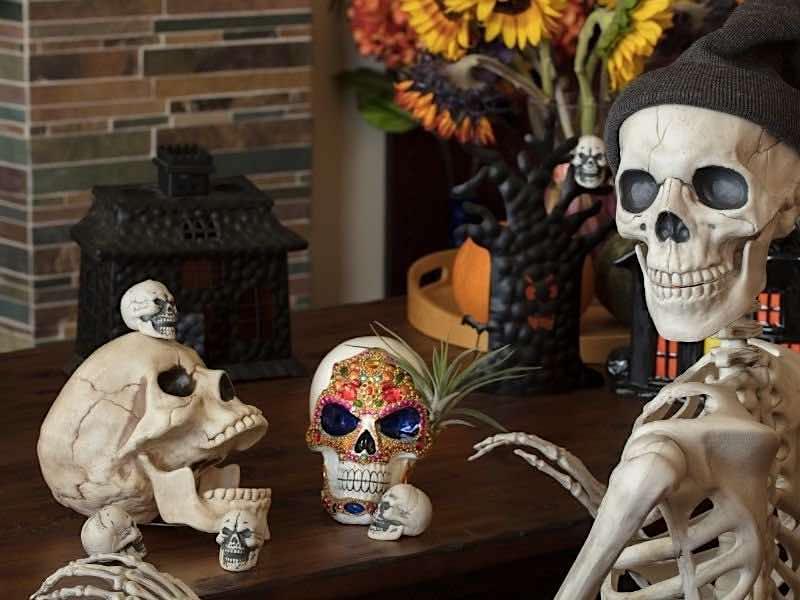 骸骨のモニュメント