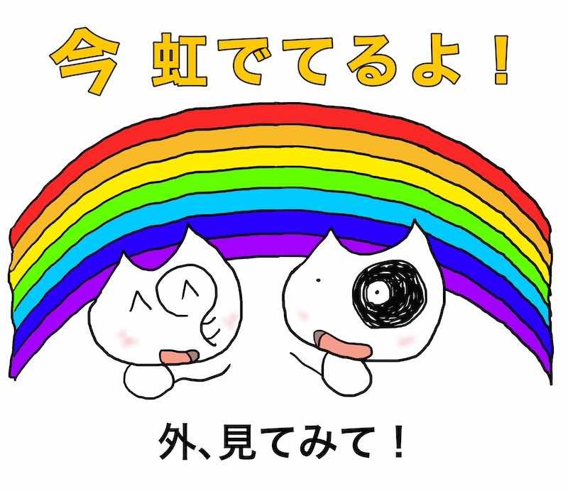 いま虹でてるよ