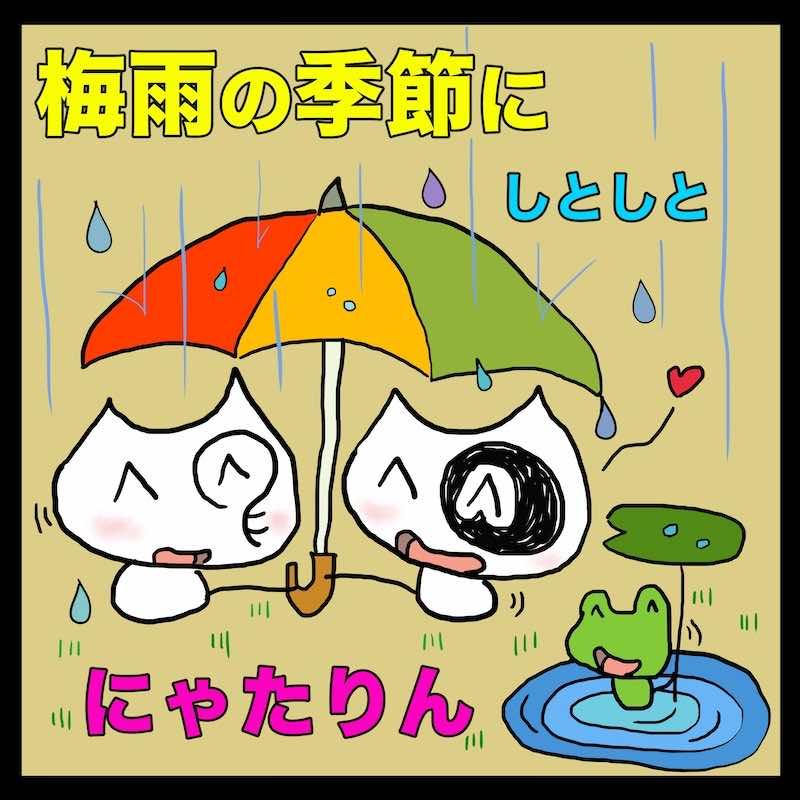 梅雨の季節にしとしとにゃたりん